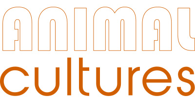 Animal Cultures