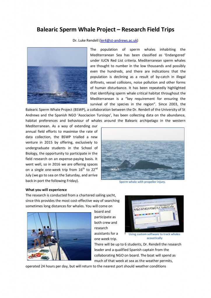 BalearicSpermWhaleProject-page-001