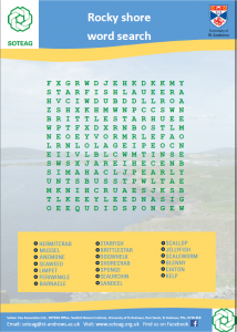 rocky-shore-word-search